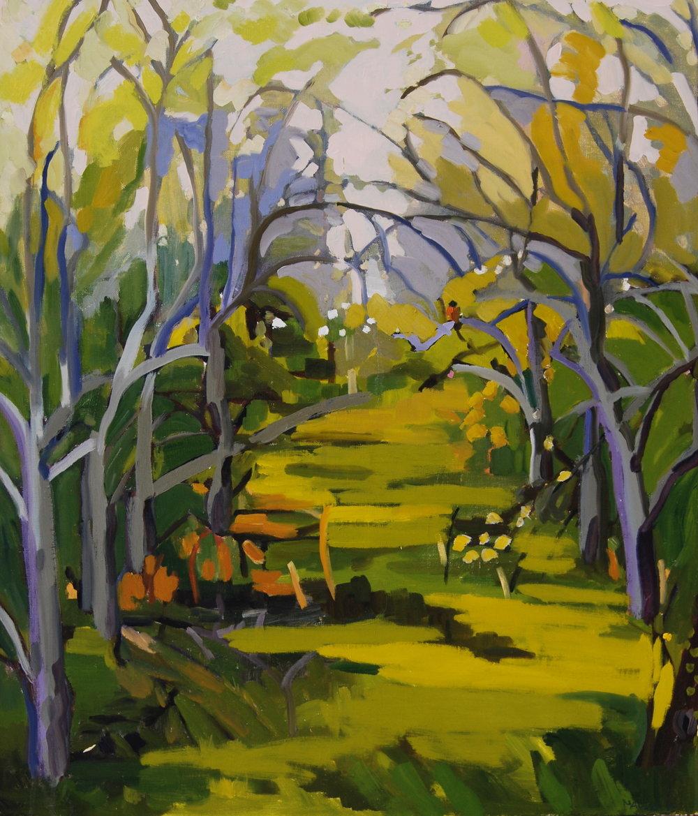 Orchard 5