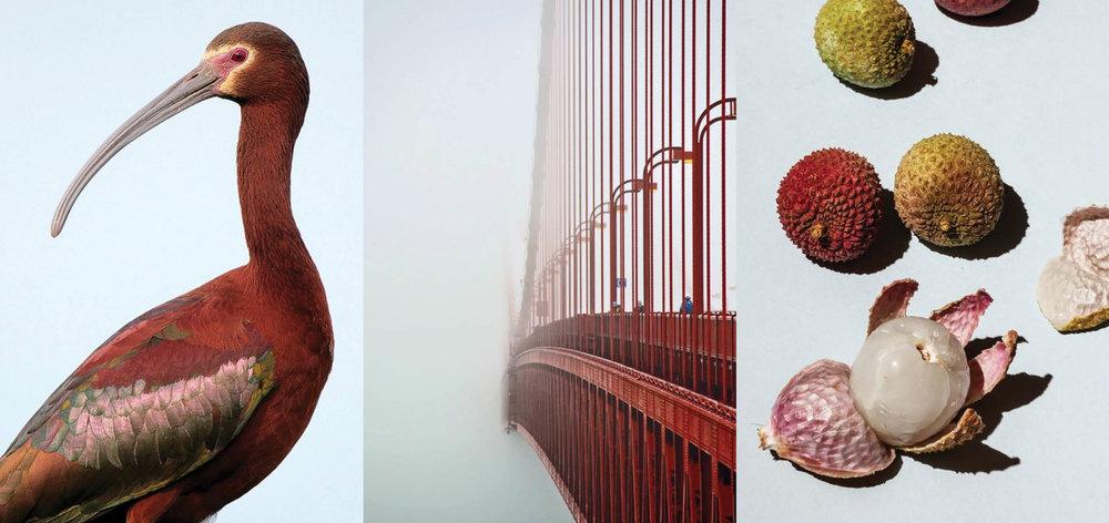 Triptych02.jpg
