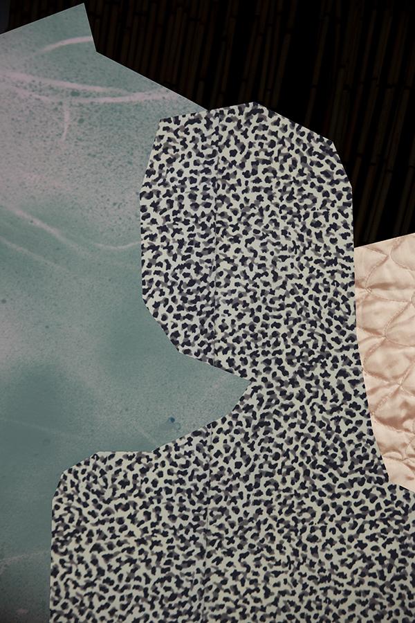 collage6a_sm.jpg