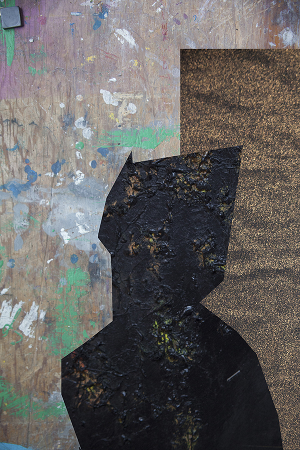 collage8_sm.jpg