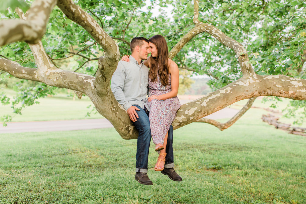 Bernheim Arboretum Engagement Session