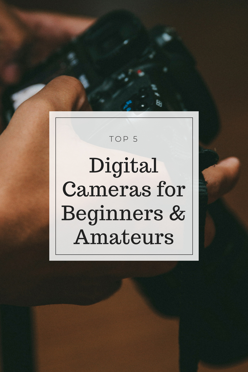 graphic for best digital cameras for beginners and amateurs