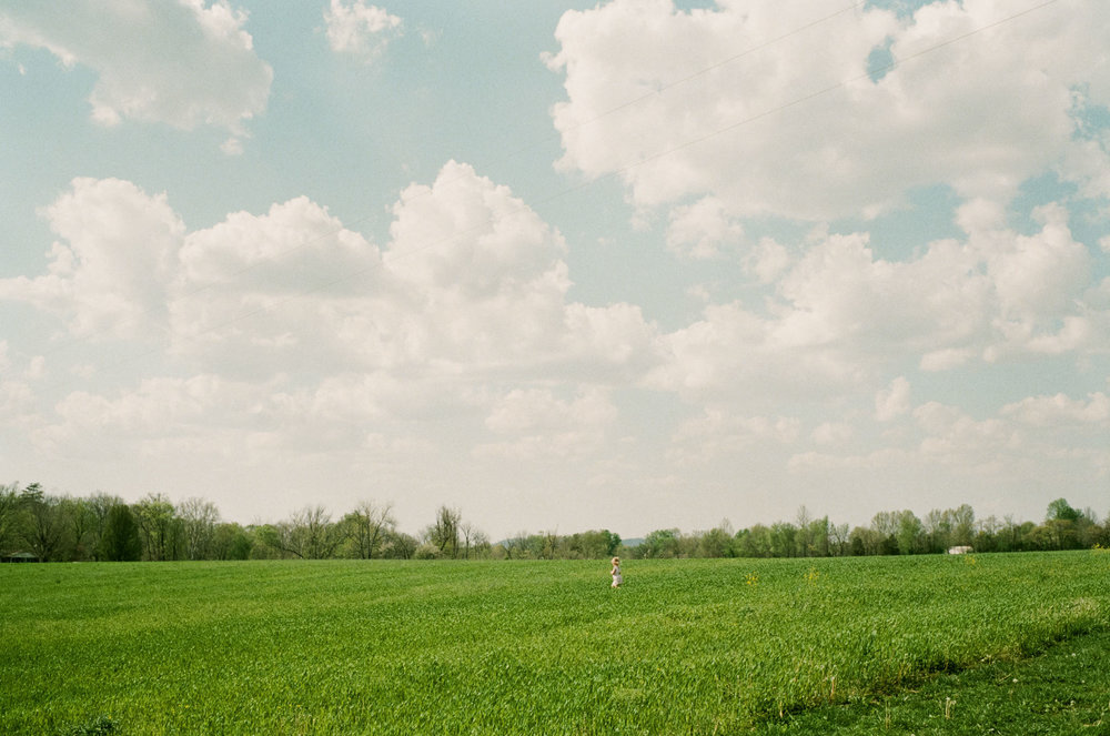 Landscape image of little girl in field taken with Leica m2 and Voigtlander 35mm f/1.4 Nokton Classic
