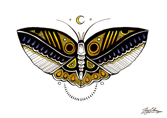 moth_toryelena