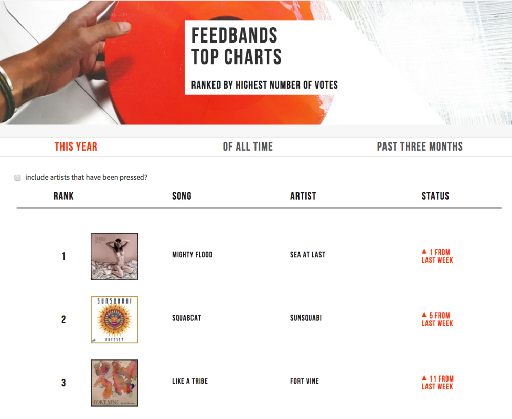 feedbands vinyl .jpg