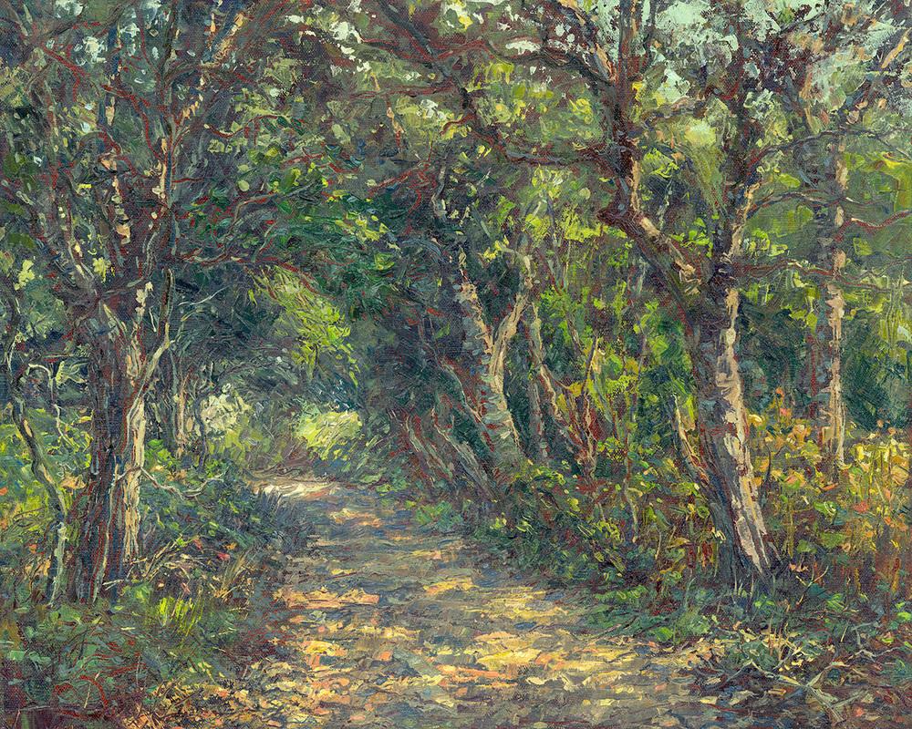 Oakwood Valley Trail