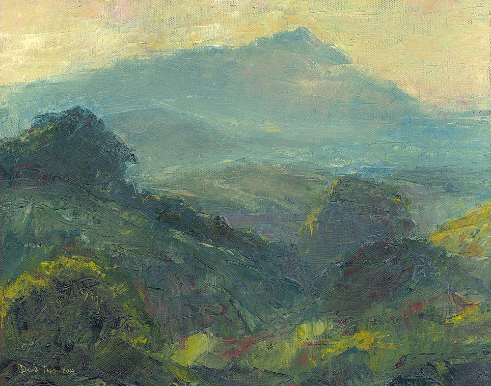 Mount Tamalpais Midsummer's Evening
