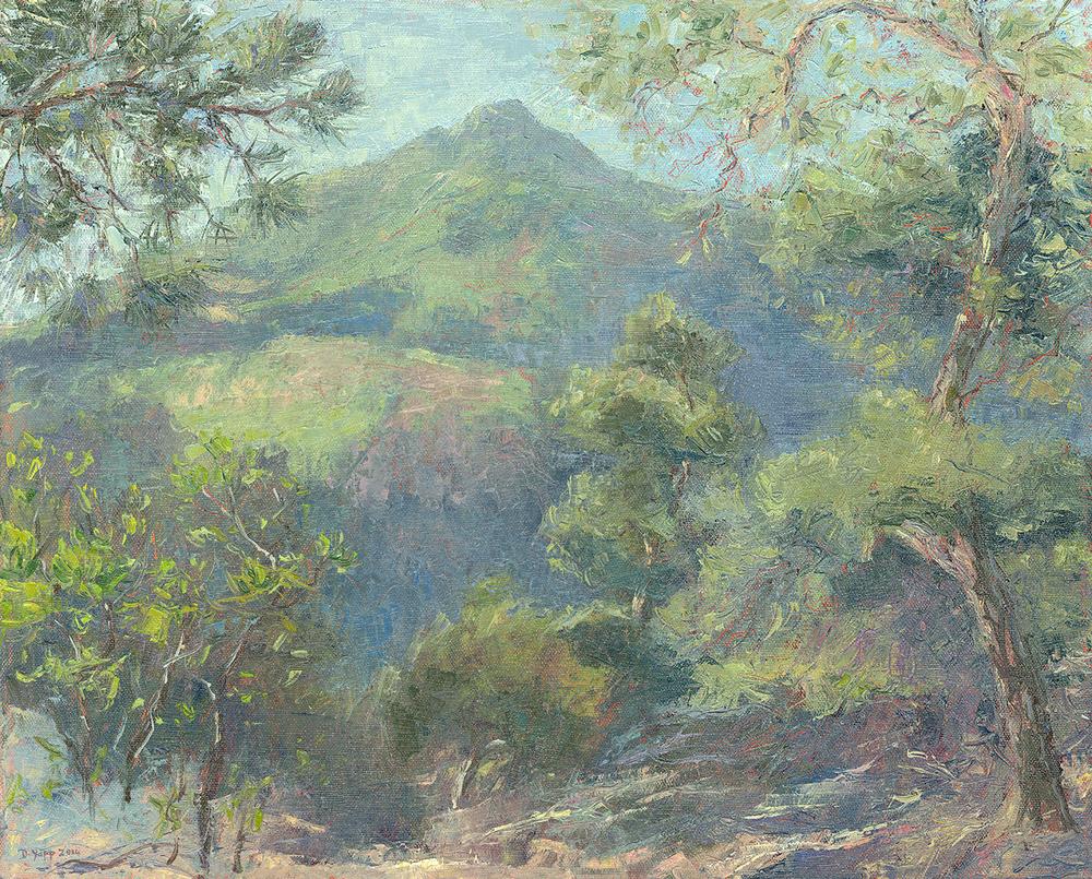 Mount Tamalpais from King Mountain