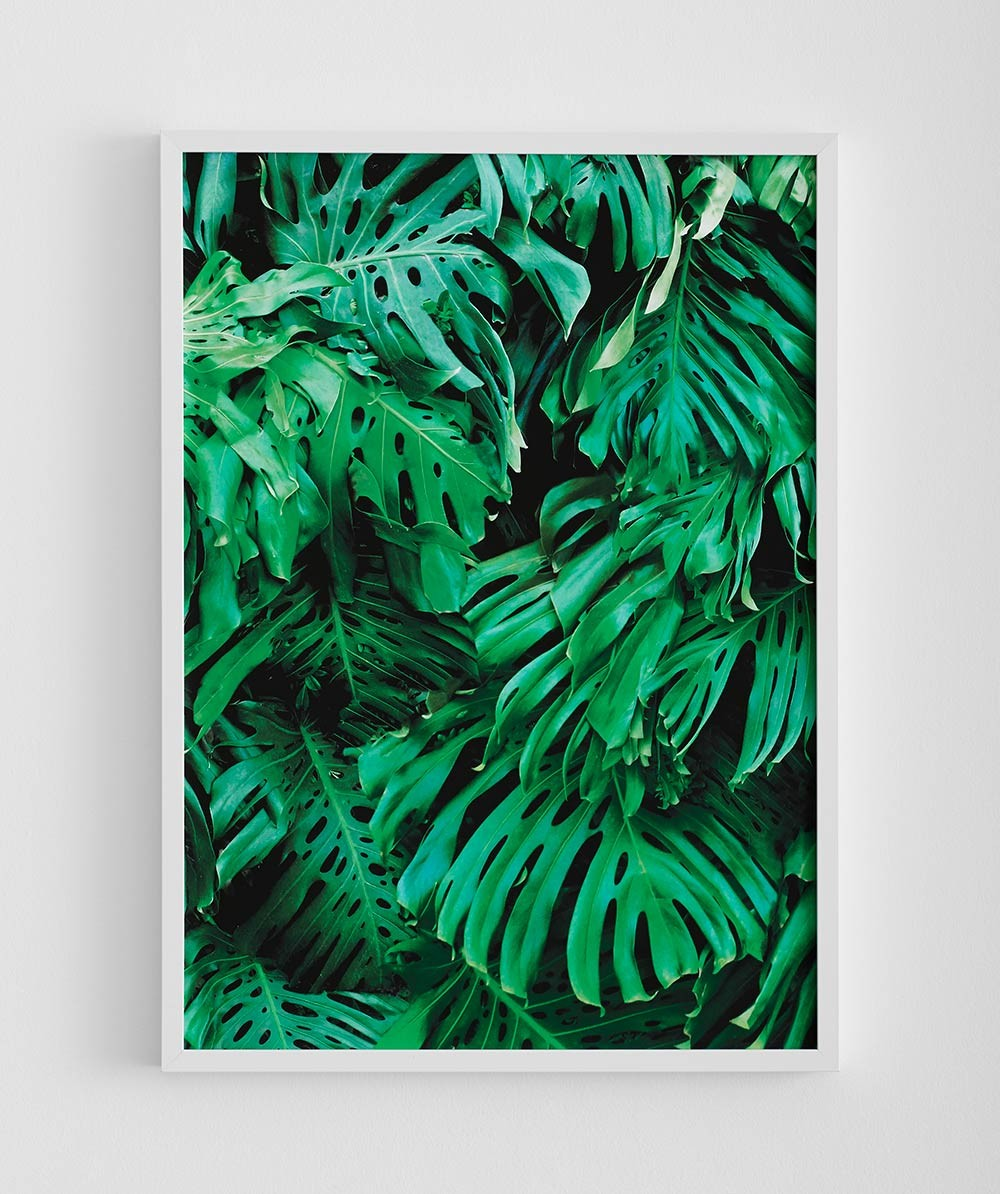 MR FANCY PLANTS MONSTERA PRINT - RRP $195.00
