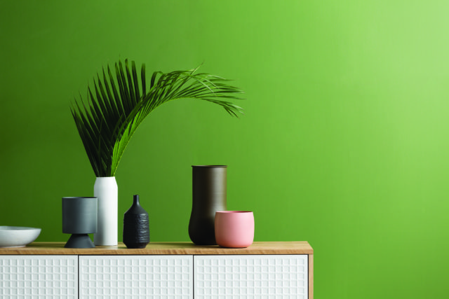 Haymes Interior Expressions low sheen acrylic in Pond Moss - part of the 'Stark Beauty' collection