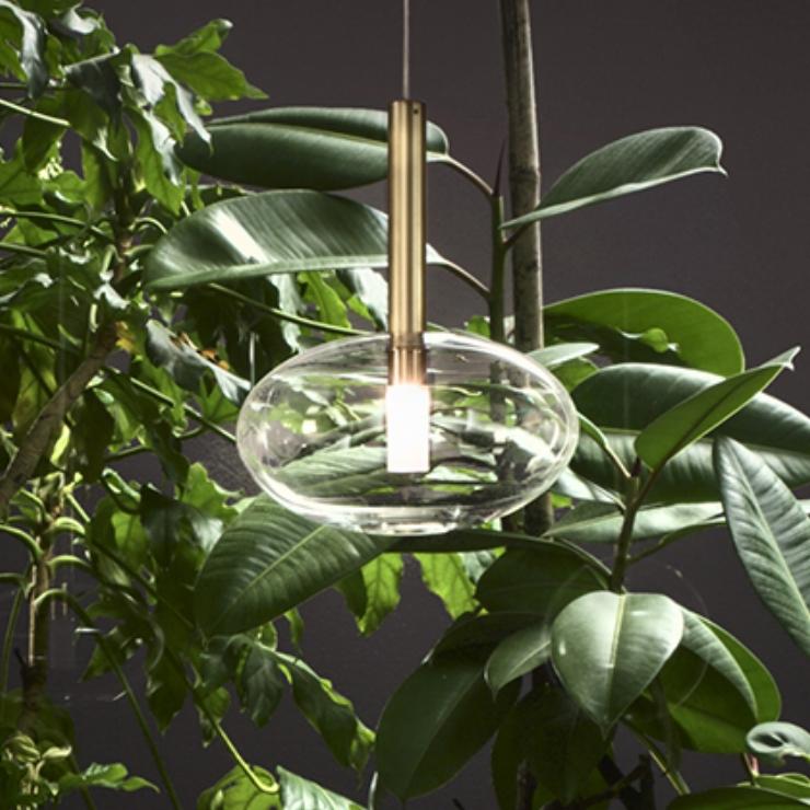 Lights Lights Lights |  Alchimia