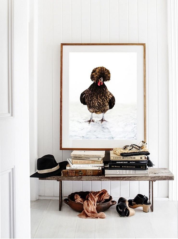 Kara Rosenlund -  Chicken Photographic Print