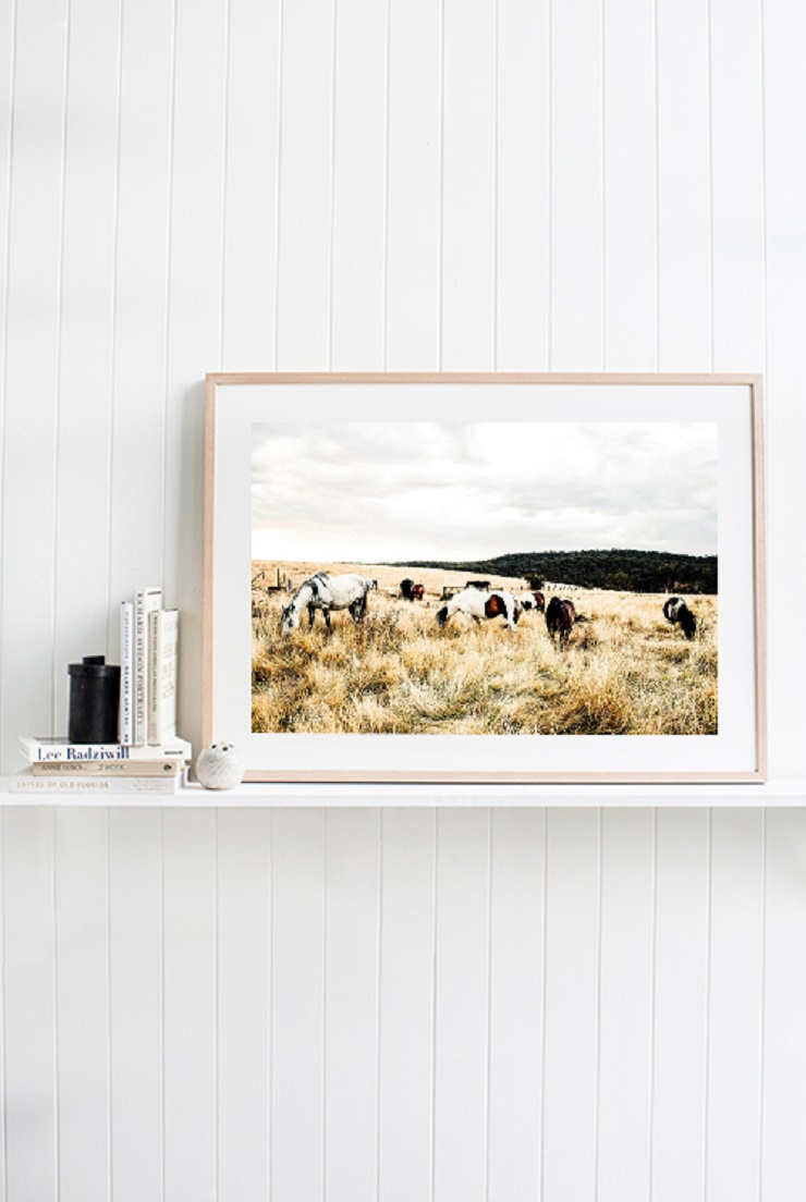 Kara Rosenlund -  Plain Lands Photographic Print