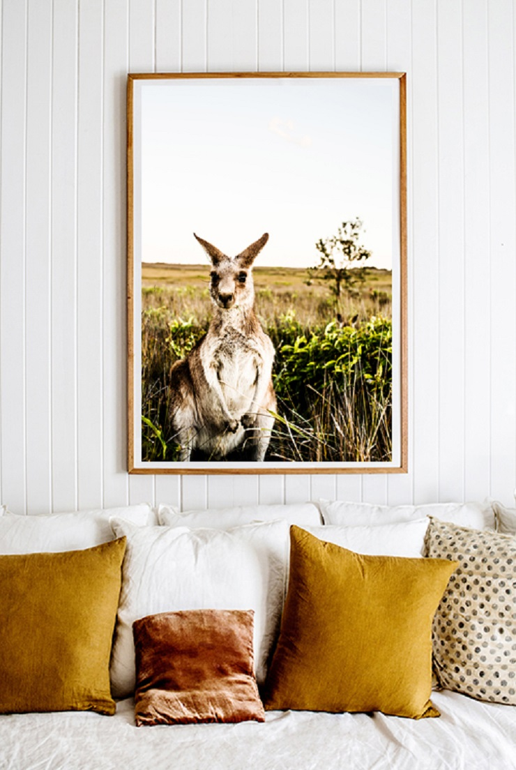 Kara Rosenlund -  Kangaroo Close-Up Photographic Print