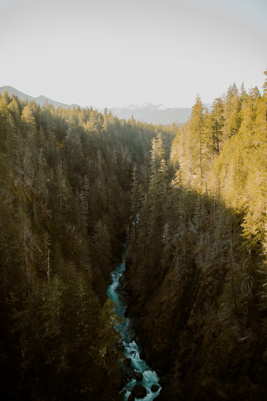 Pacific Northwest / Tammie Joske Travel Blog