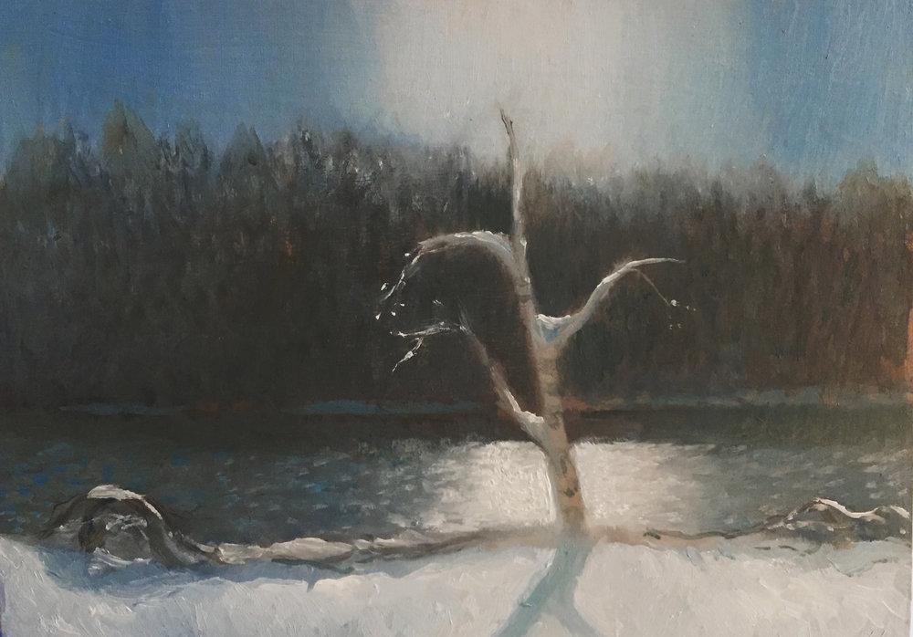 by Anneli Skaar