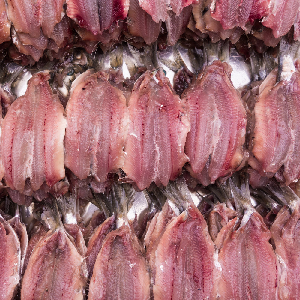 25Fish filets-2.jpg