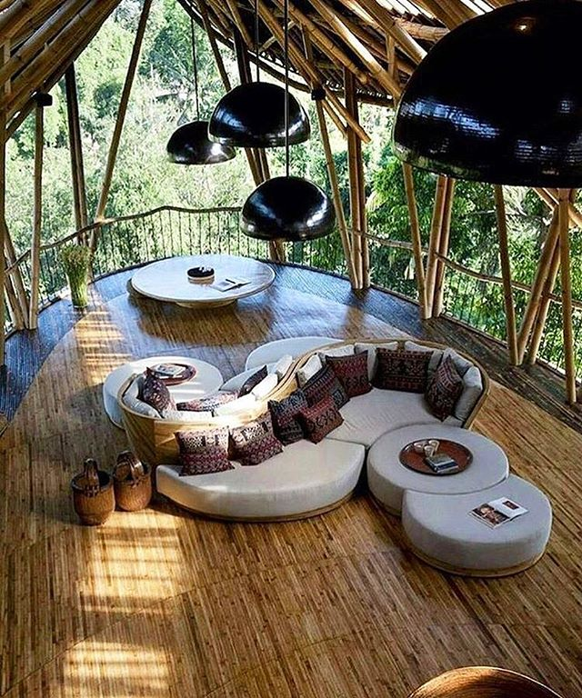 That treehouse life 🌳
