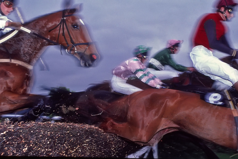 Steeplechase, A Day in the Life of Ireland.