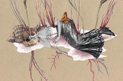 phoebe poetry journal cover dina hardy poem vol.jpg