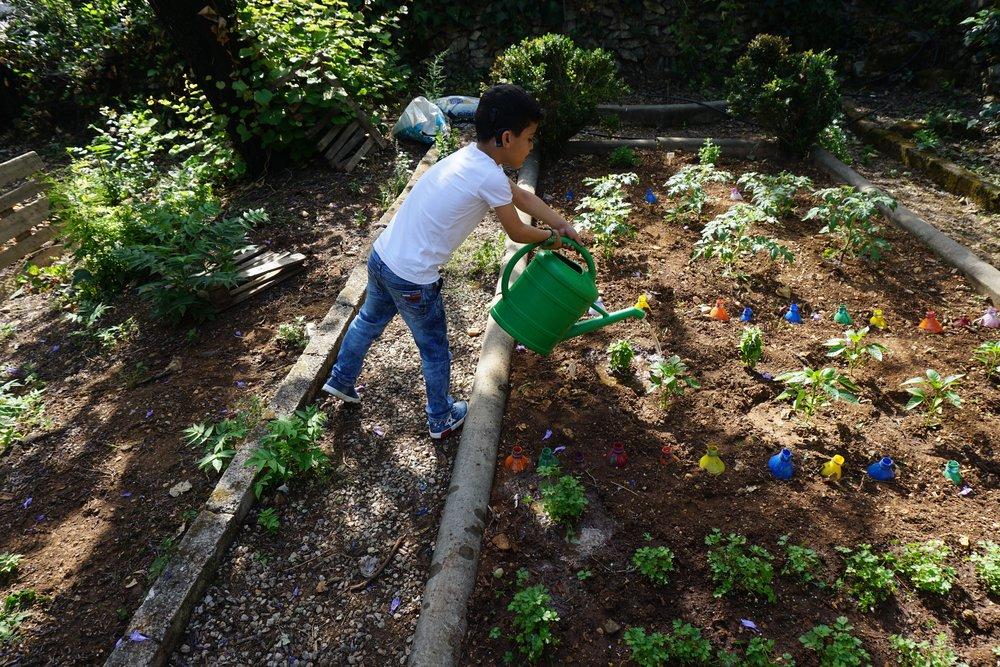 The sensory garden at FAID