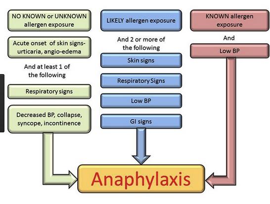Diagnostic algorithm forAnaphylaxis
