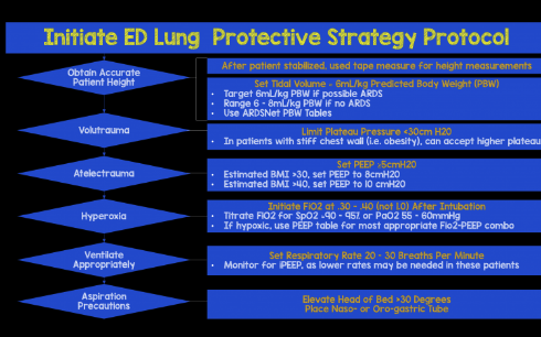 Ventilator Lung Protective Strategy