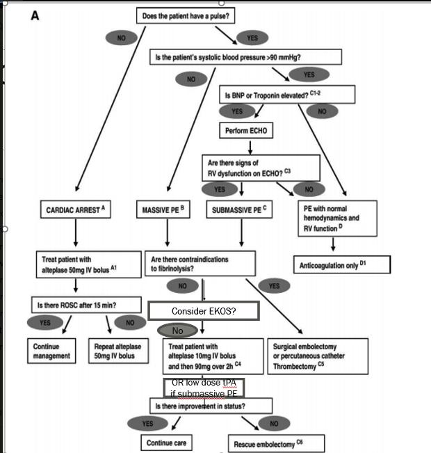 Proposed Management Algortithm for PE