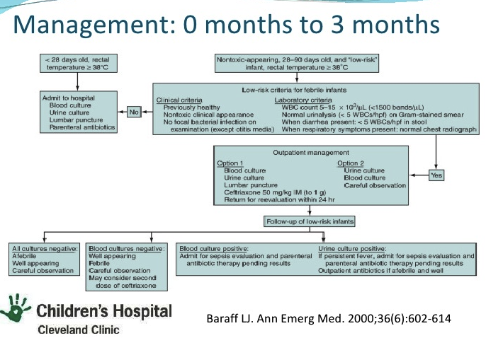 One reasonable approach to the febrile infant under 3 months. Some more conservative docs would move the cut-off for full septic workup to 6 weeks.
