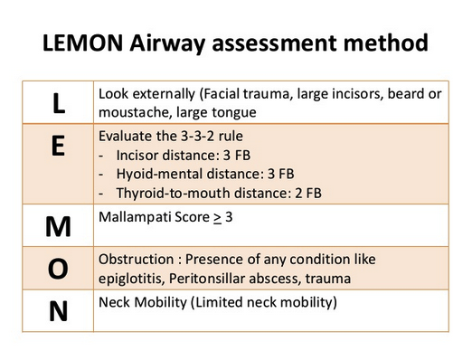 The LEMON method of airway assessment.  Consider all these assessments when planning your approach to managing the airway.