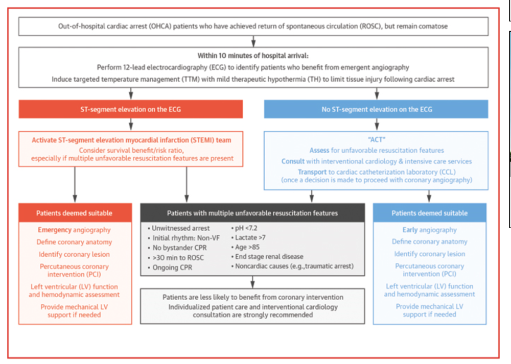 ACC Risk Stratification Algorithm for Comatose Post-Cardiac Arrest Patients. Patients with multiple unfavorable characteristics are less likely to benefit from emergent cardiac cath.