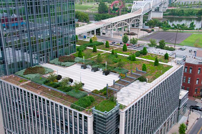 Green Roof of Pinnacle Building