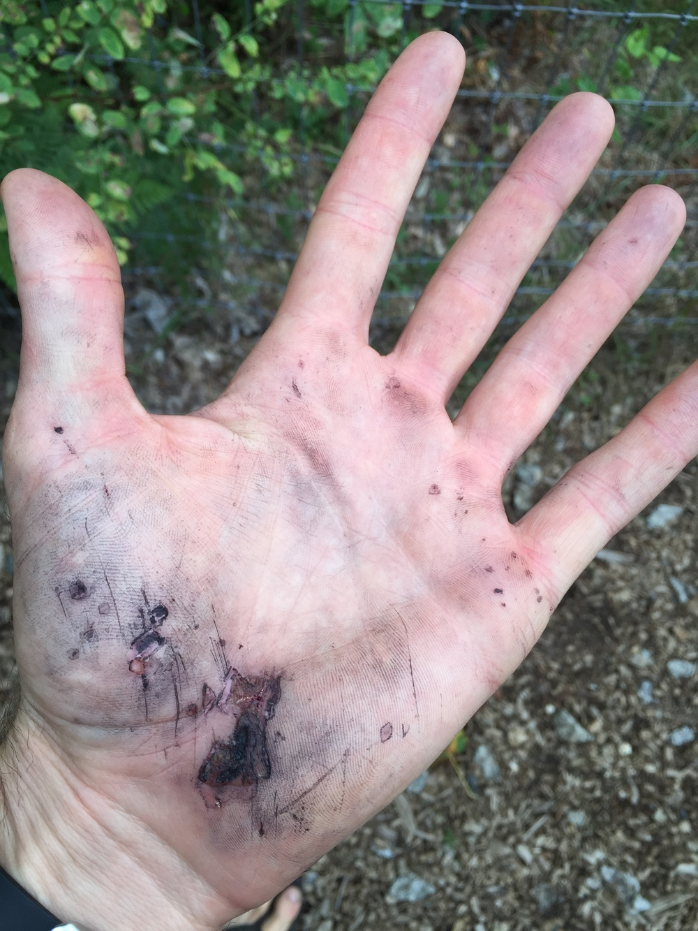 Remnants from the pemi loop that was re-opened in Sunapee last week. The black is from the bike gloves which were a smart choice for today's race.