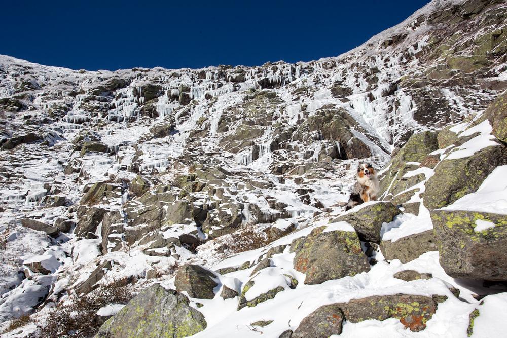 Tuckerman Ravine - Icefall