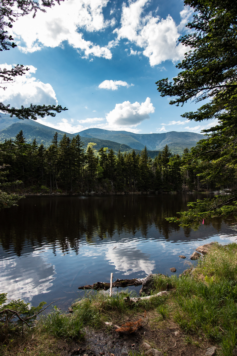 View of Mount Washington over Lost Pond.