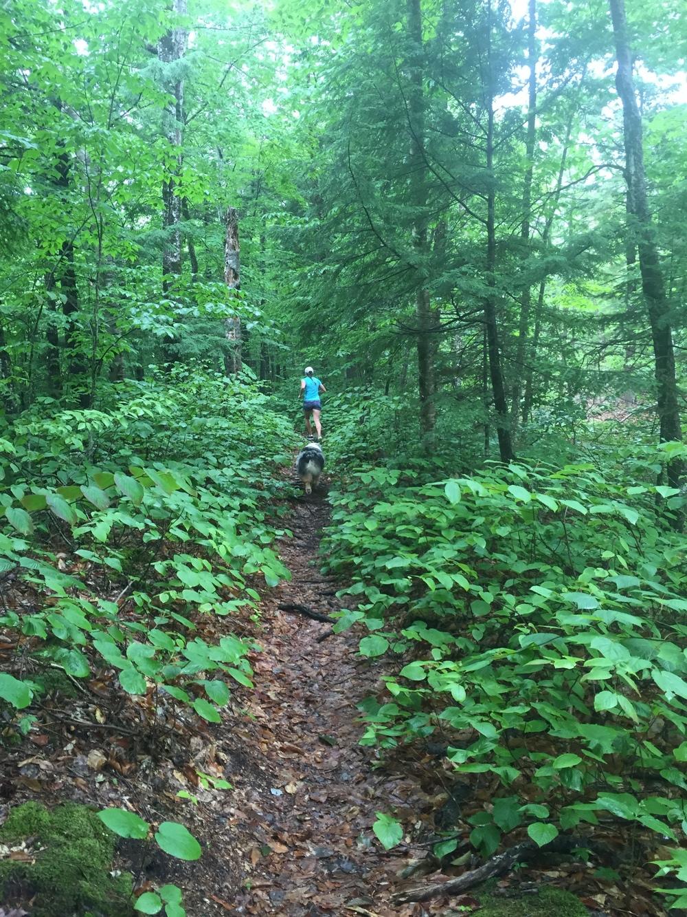 Happy Trails on the Nanamocomuck.