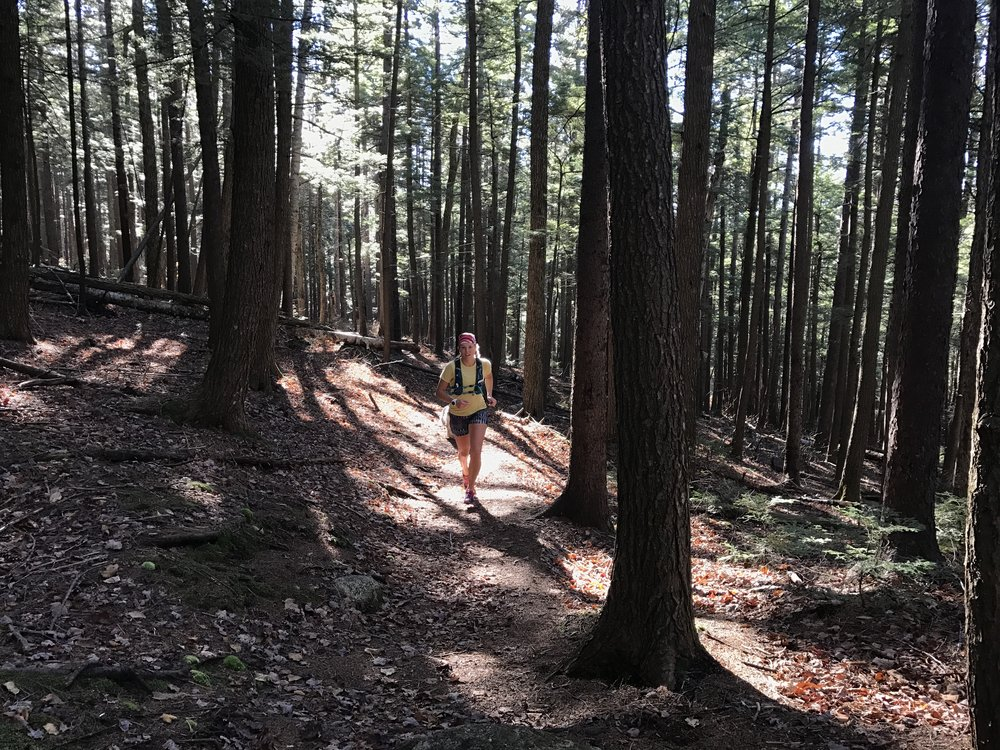 Hilary McCloy running out the Brook Trail, Chocorua Mtn