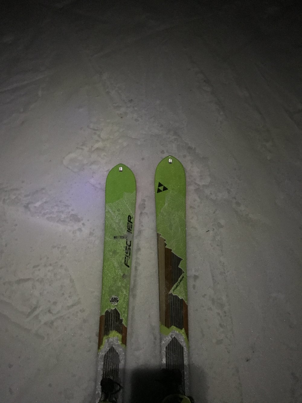Wildcat Night Ski