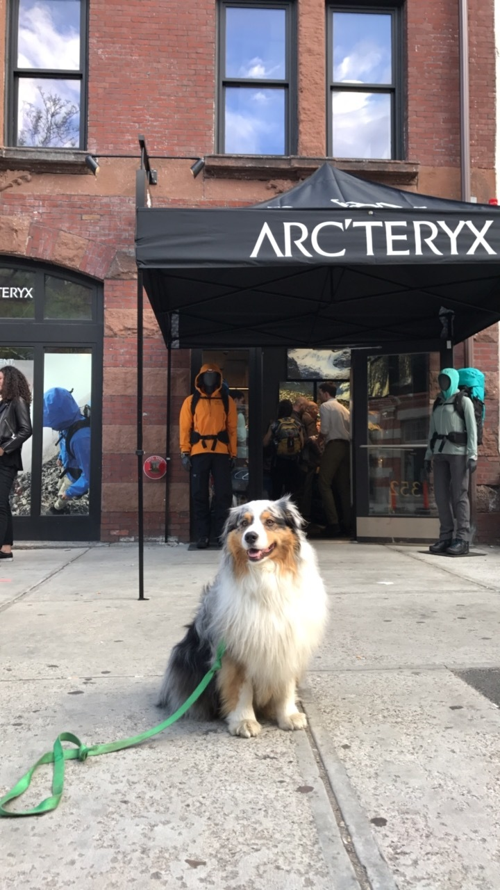 squall arcteryx boston.JPG
