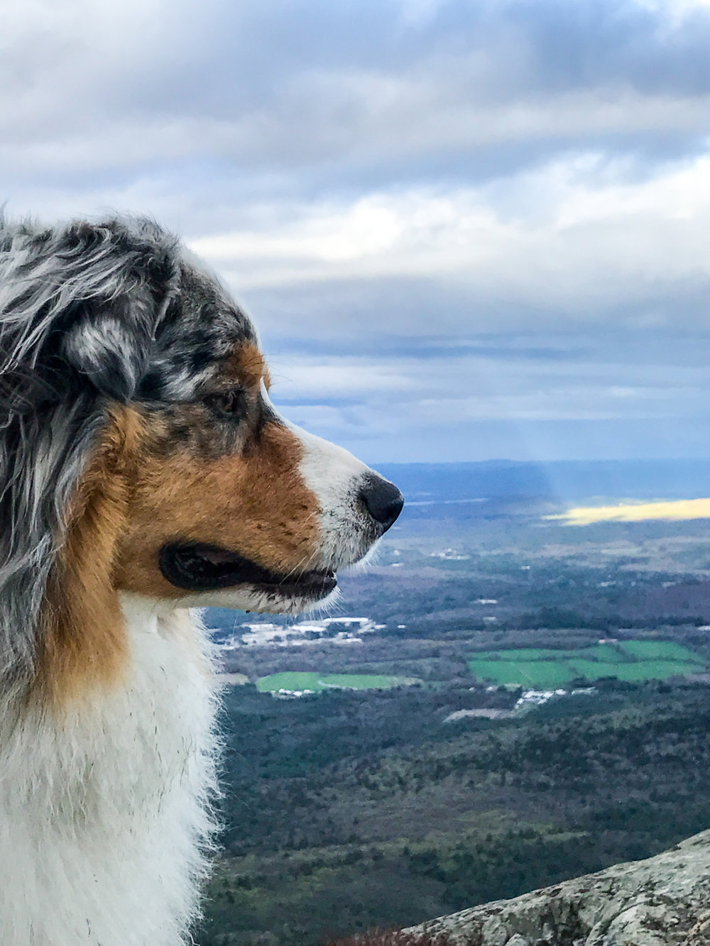 Squall overlooking Mount Washington Valley.