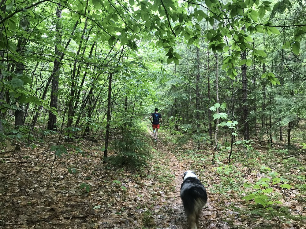 NH Trail Running.JPG