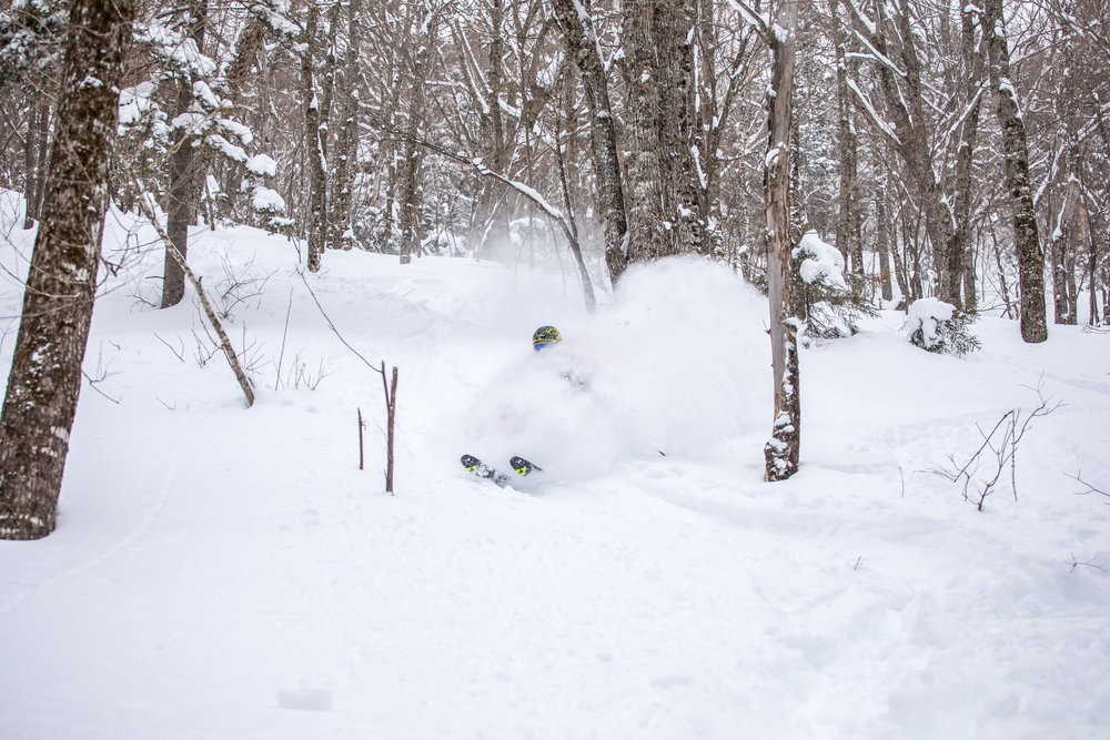Andrew Drummond Skier White Mountains Backcountry.jpg