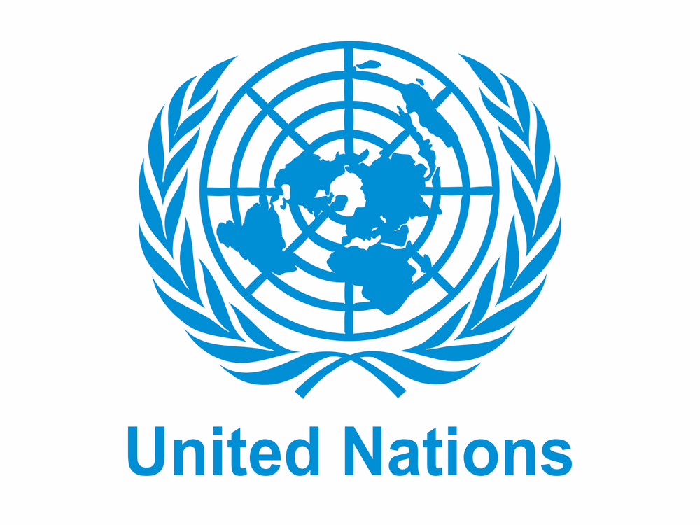 - The UN Migration Agency's Director General has selected Tolu to serve as an advisor to the United Nations Department of Public Information in New York. She will focus on youth engagement on the Sustainable Development Goals (SDGs) and migration.