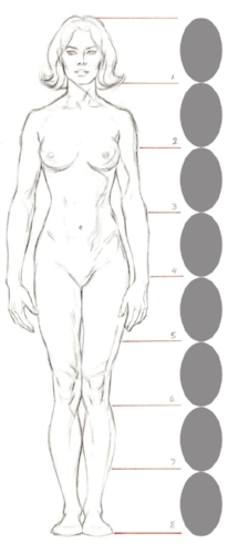 8 heads female - client comparison.jpg