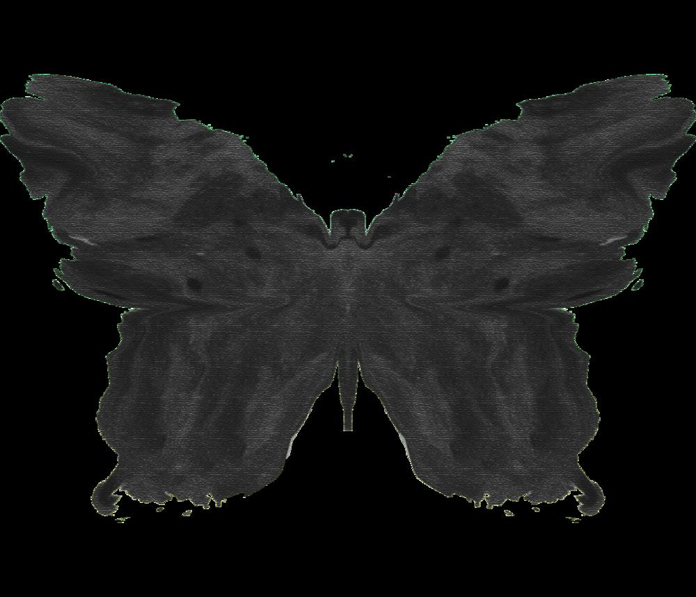 butterflyblot 2019.png