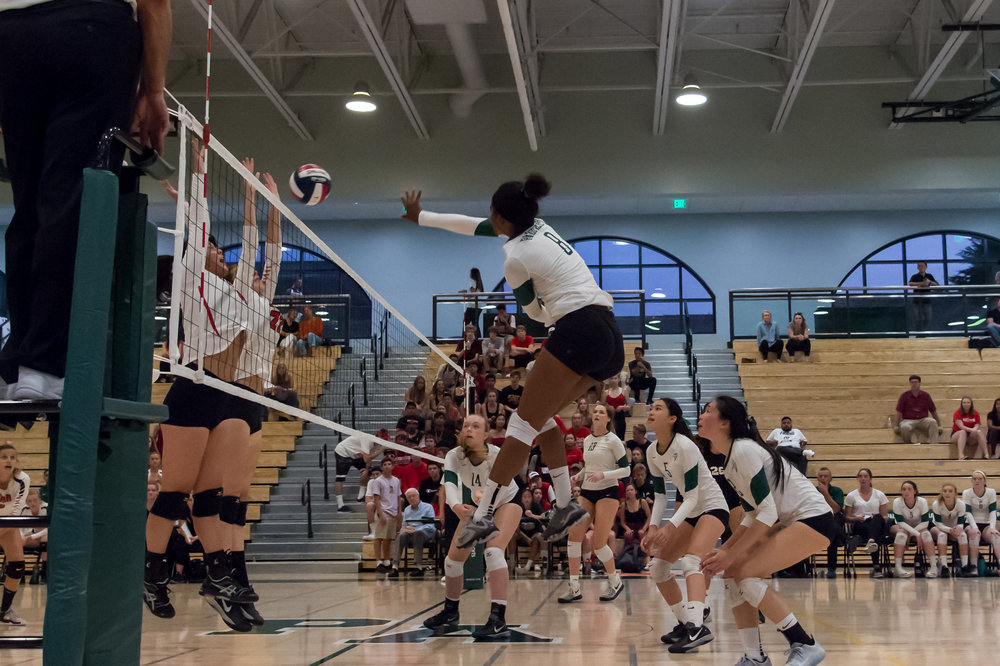 083117 GIrls Varisty VB vs GUnn-9321.jpg