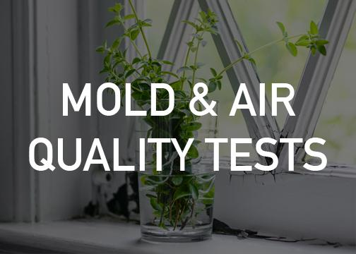 Mold Air Quality Testing Saskatoon Sk Safehome Inspections