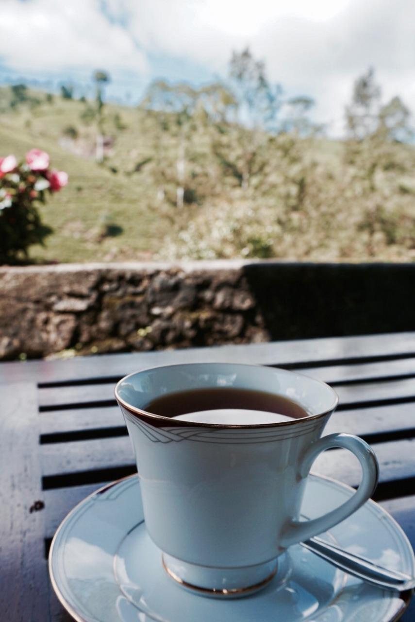tea-sri-lanka