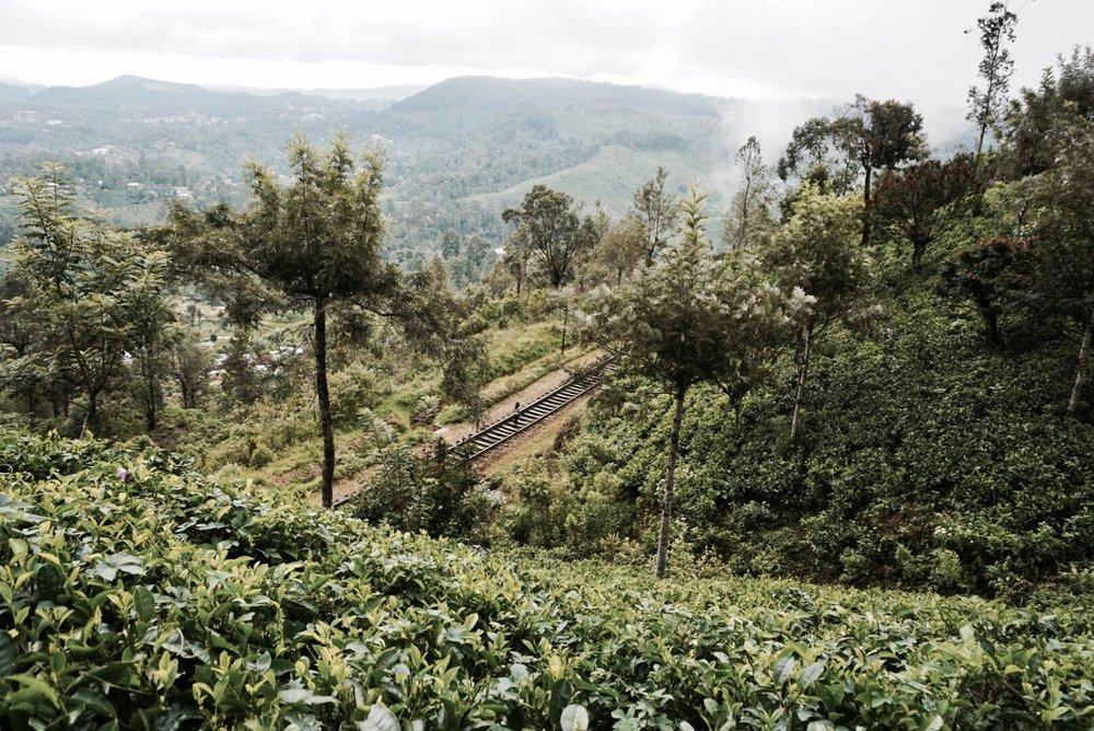 Haputale Sri Lanka Guide