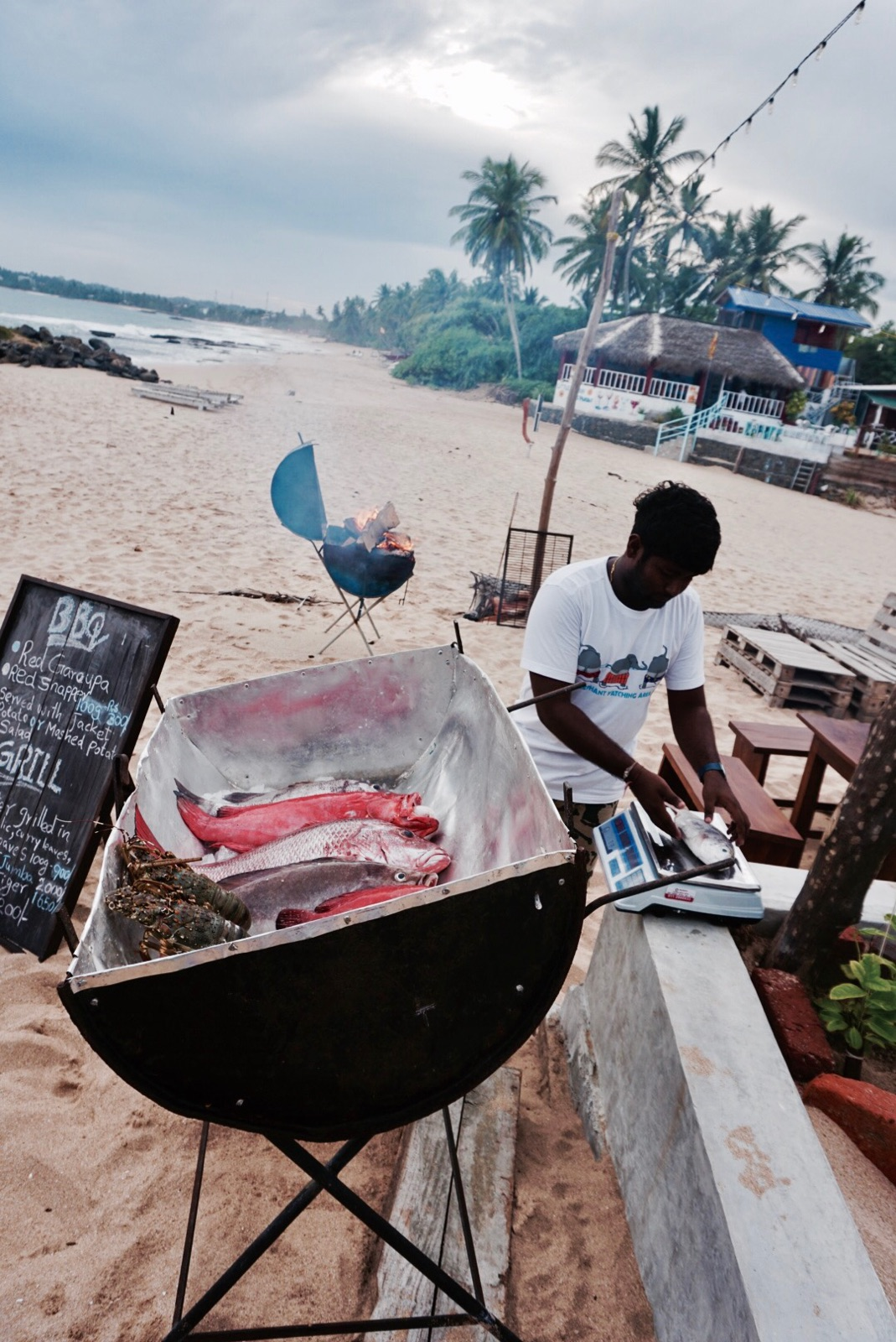 fresh fish barbeque on the beach in tangalle, sri lanka